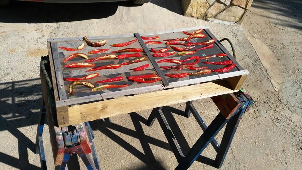 essiccare peperoncini