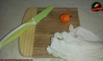 Come conservare i semi di peperoncino per la prossima stagione