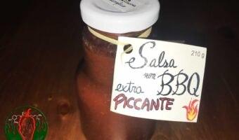 Salsa barbecue piccante
