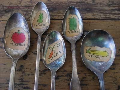 etichette cucchiai