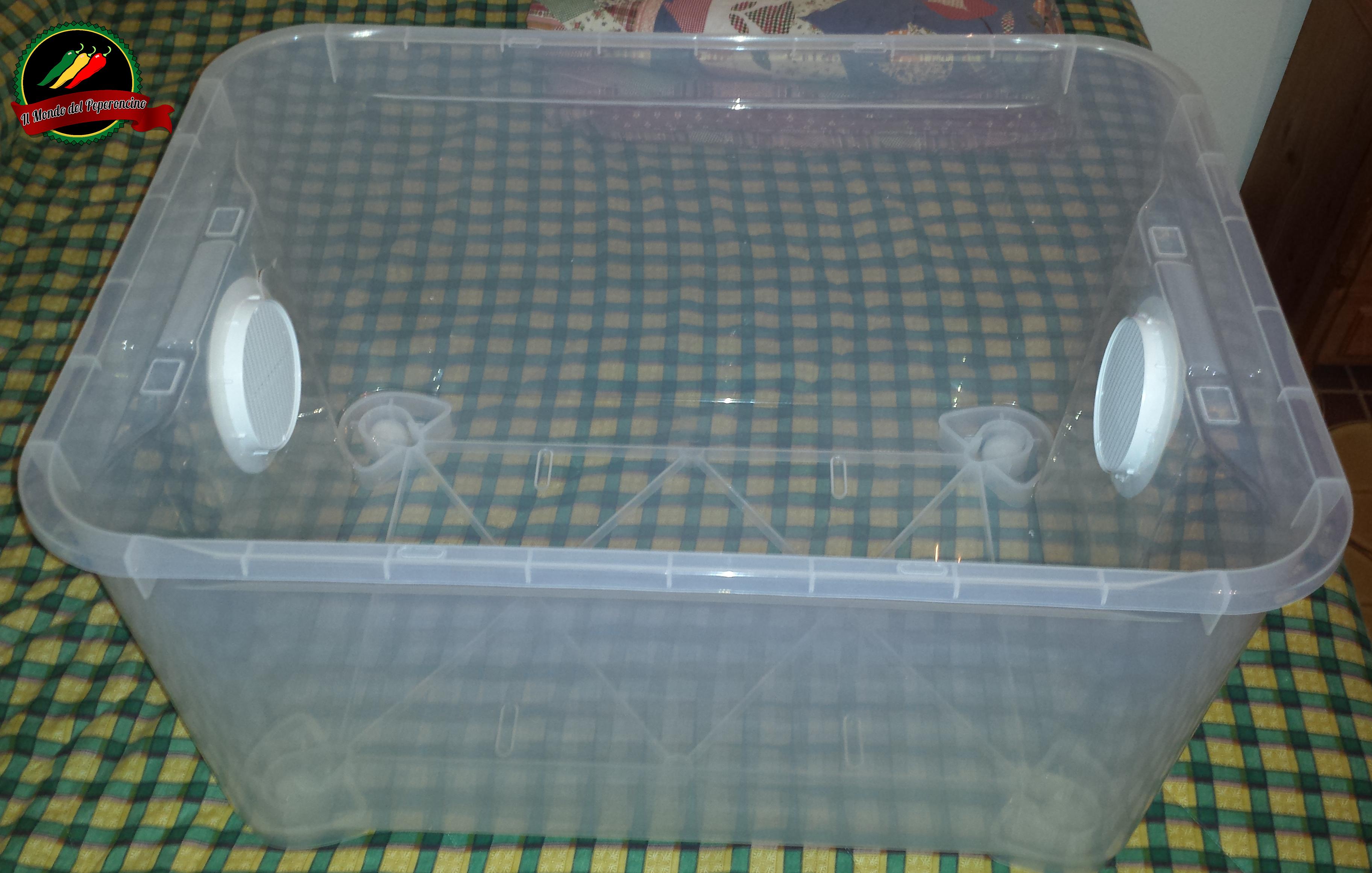 contenitore grow box