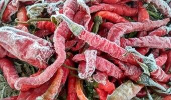 congelare peperoncini