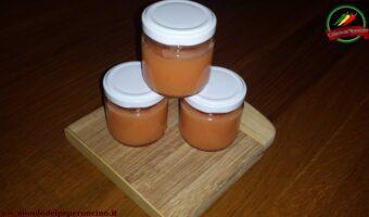 salsa piccante habanero ananas e zenzero