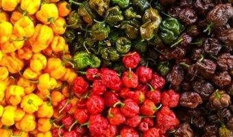 Peperoncini freschi e prodotti piccanti online: Dove comprare?