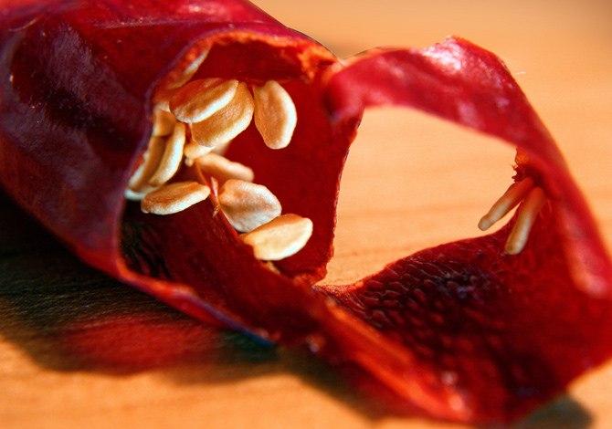 Peperoncino per le malattie cardiovasacolari