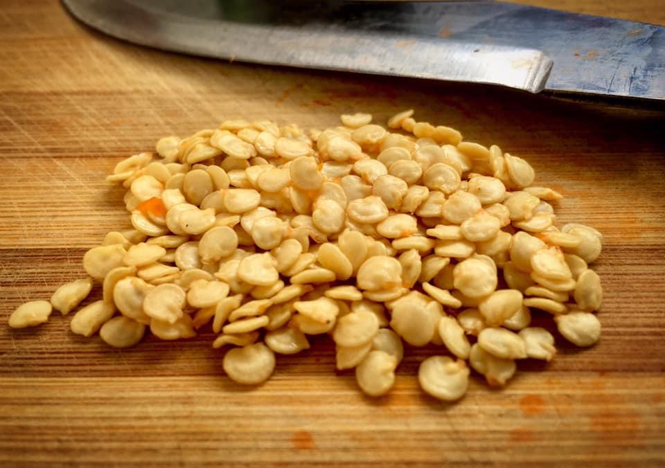 estrarre semi di peperoncino