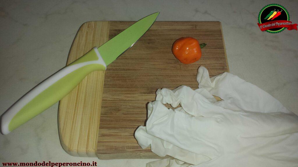 conservare semi di peperoncino